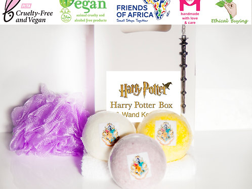 Harry Potter Wand Selection Box