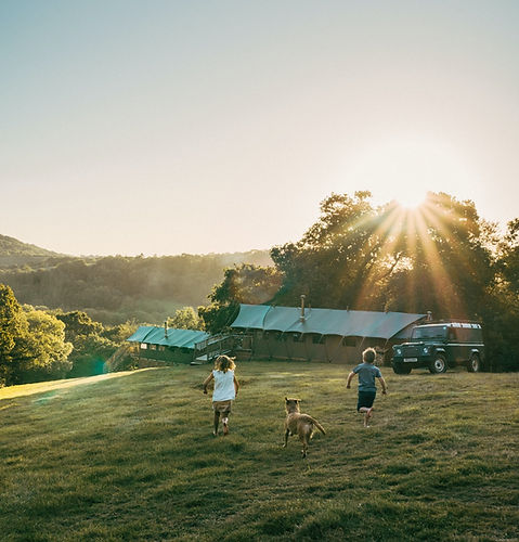 Exe Valley Glamping is Dog-Friendly