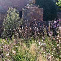 Redbrick Studio gardens
