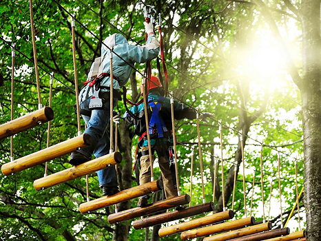 Go Ape at Exe Valley Glamping