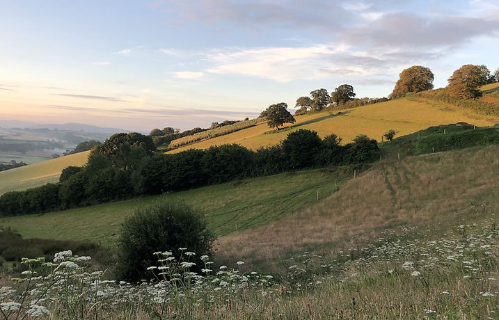 Redbrick Barn views