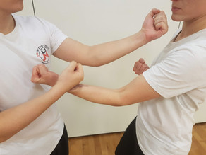 Practical Wing Chun 8 Punches