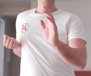 The 4 Wrist Positions of Practical Wing Chun