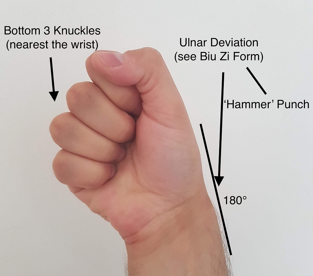 Wing Chun Fist - Ulnar Deviation
