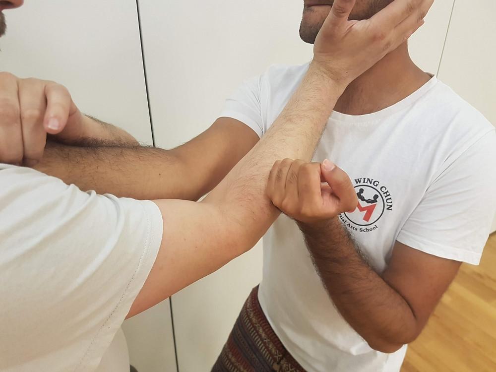 Wing Chun Pak Daa