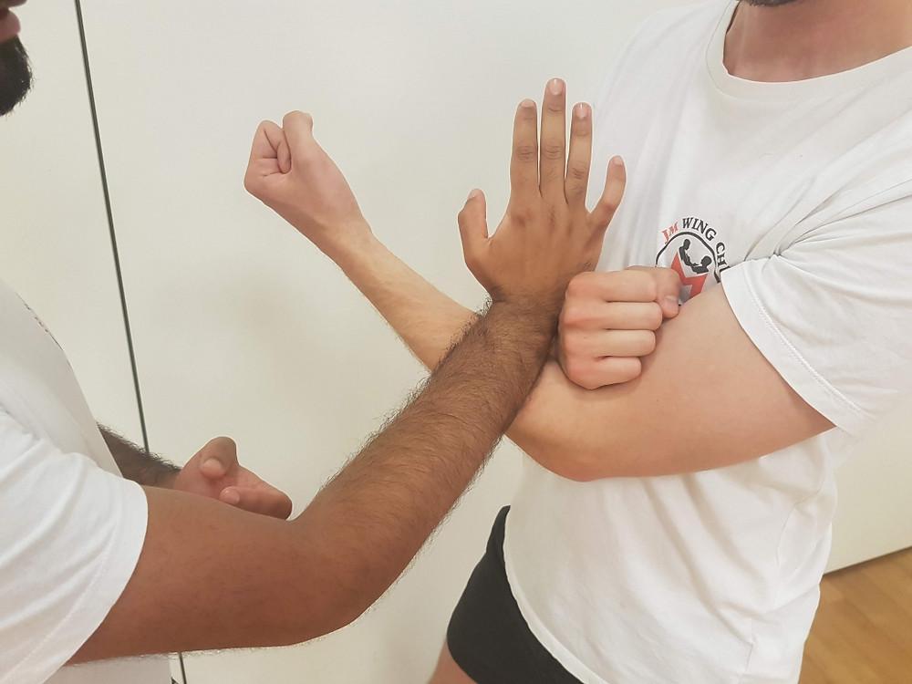 Wing Chun Pak Sau