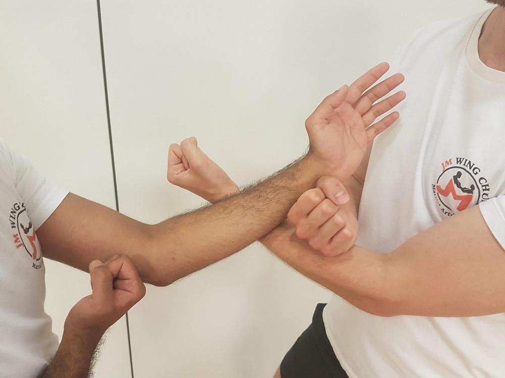 Wing Chun Tiu Sau