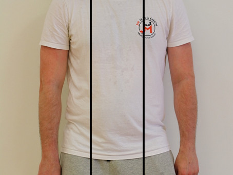 The 4 Elbow Lines in Practical Wing Chun