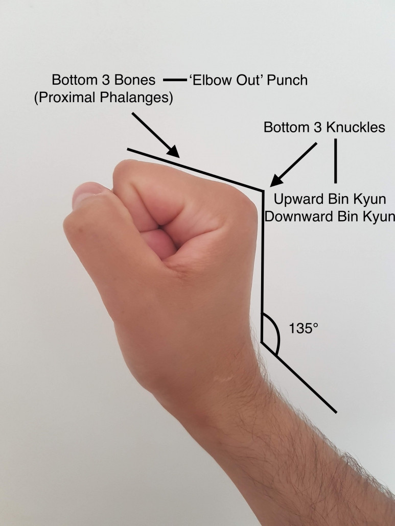 Wing Chun Fist - Extended