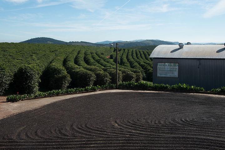 Fazenda Vila Boa - 09.jpg