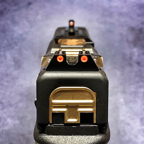 HD-209 F/O Sights