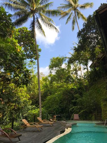 One World Retreats Ubud, Bali