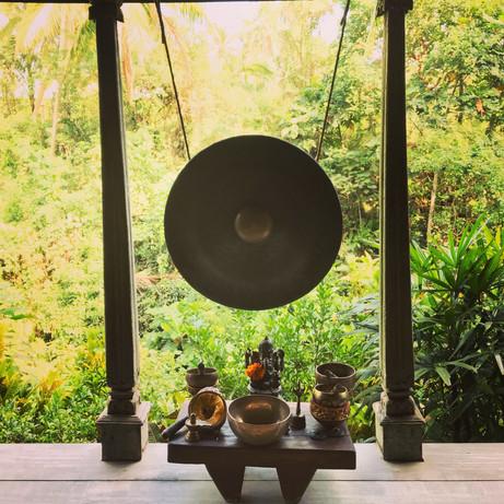 Yoga Shala at One World Retreats, overlooking the lush jungle