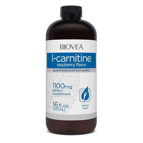 L-CARNITINE LIQUID (Raspberry) 1100mg (16oz) 473ml