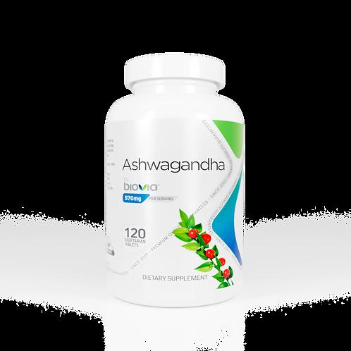ASHWAGANDHA 120 Vegetarian Tablets
