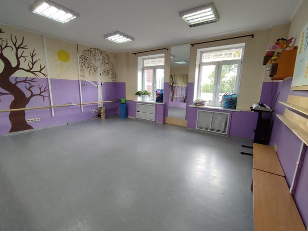 Детский сад Передовиков музыкальный зал.jpg