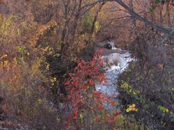 Colorful Fall Creek