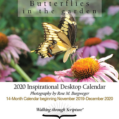 2020 Butterflies in the Garden