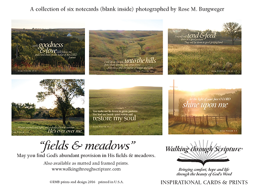 Fields & Meadows Inspirational