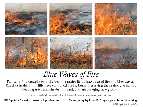 Blue Waves of Fire