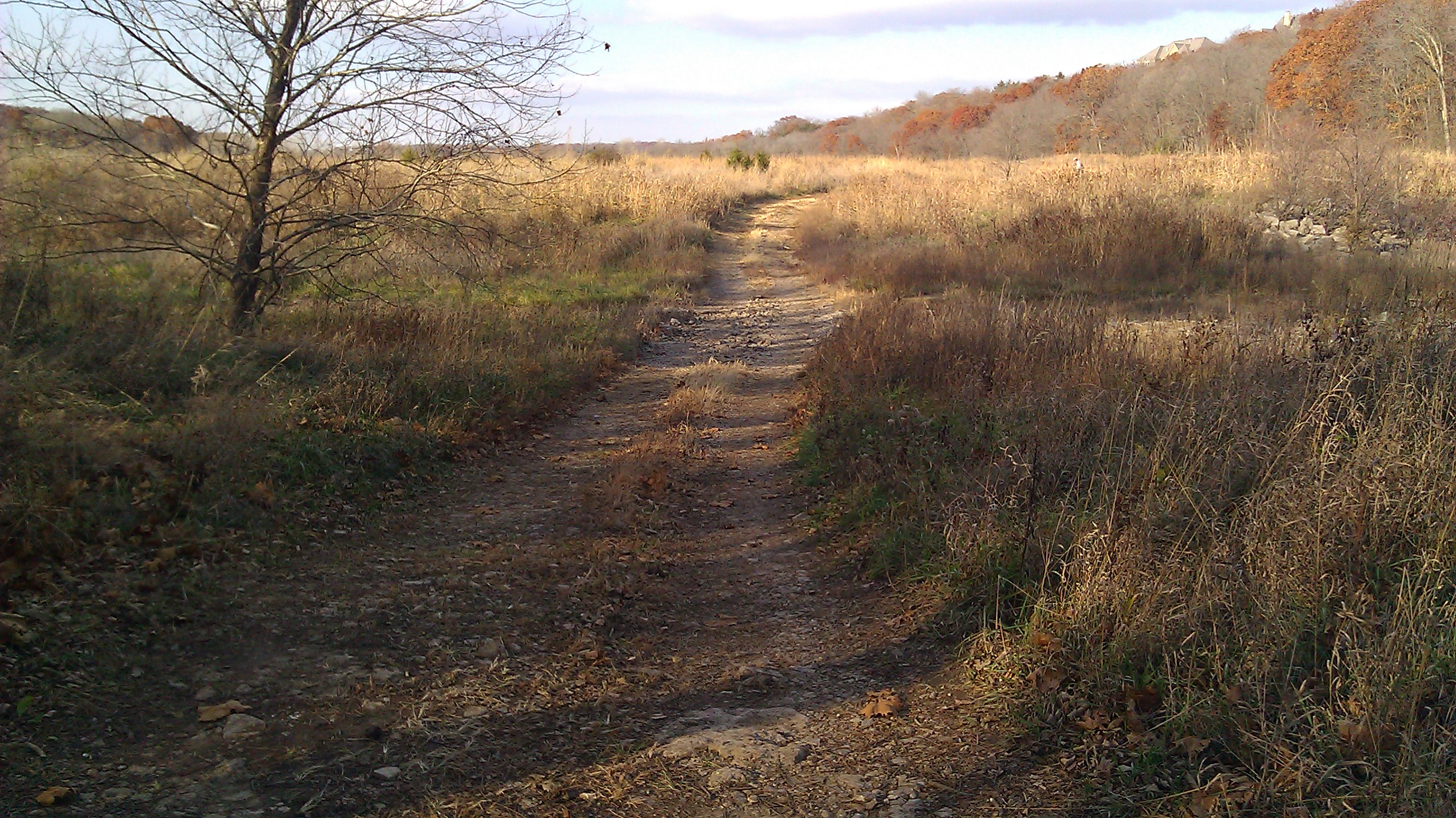 Rustic Path