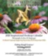 Butterflies in the Garden-website Cover.