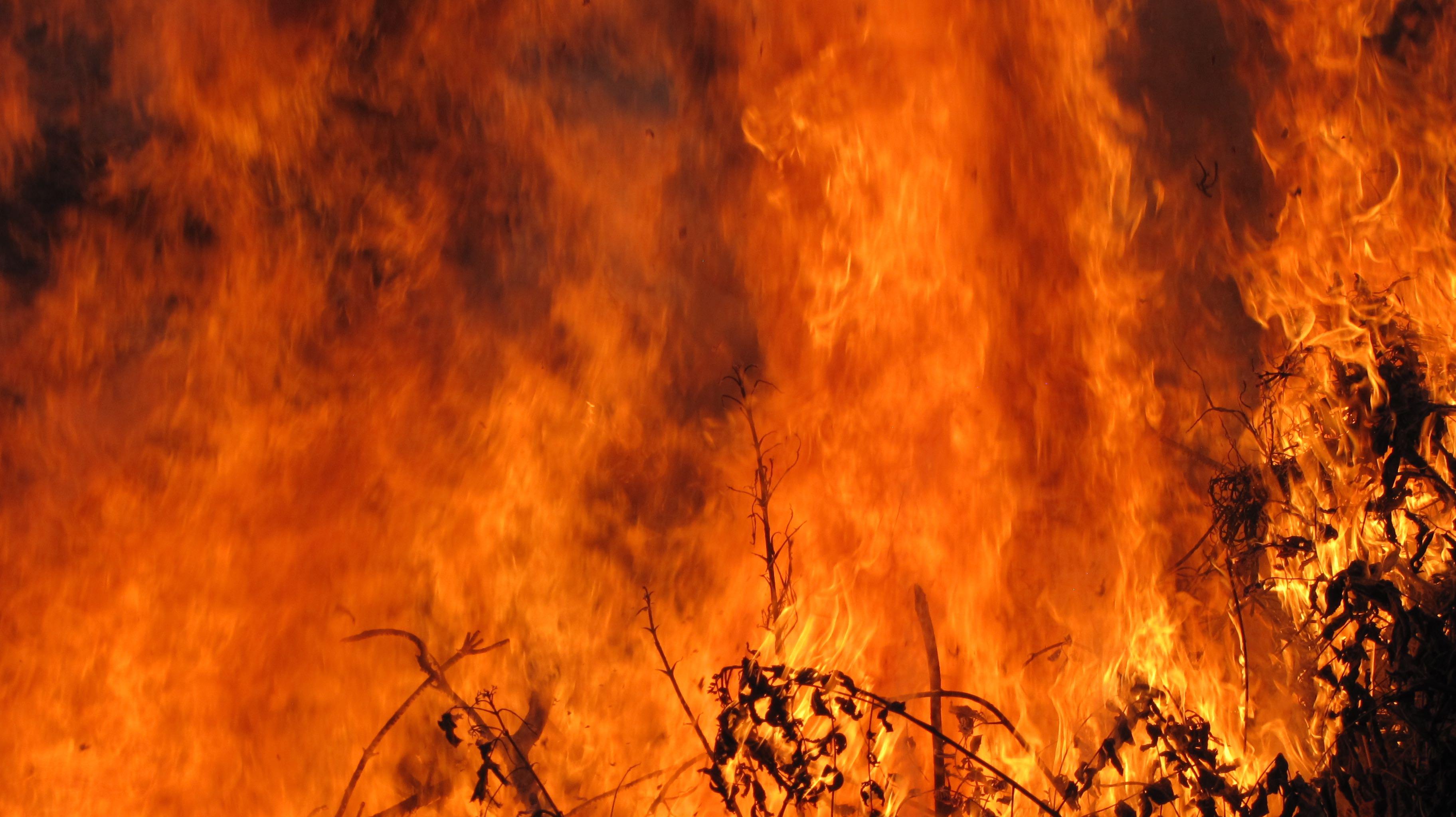 Bon Fire III