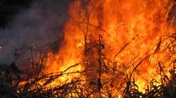 Bon Fire I