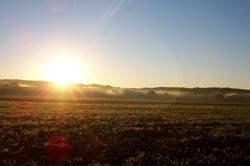 Mercies each Morning