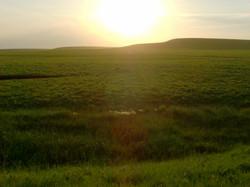 Sunset in the Flint Hills