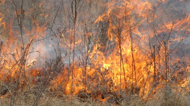 Flint Hills Burn III