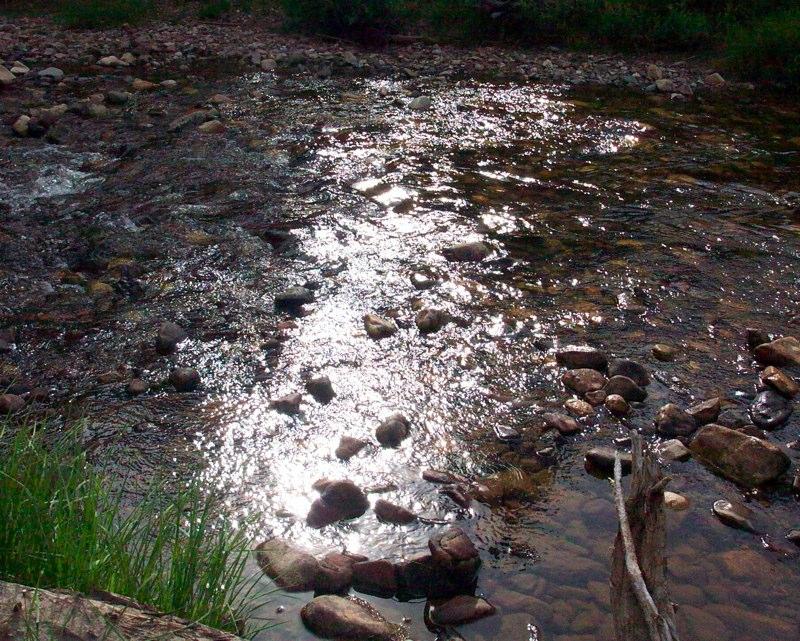 Restful Stream