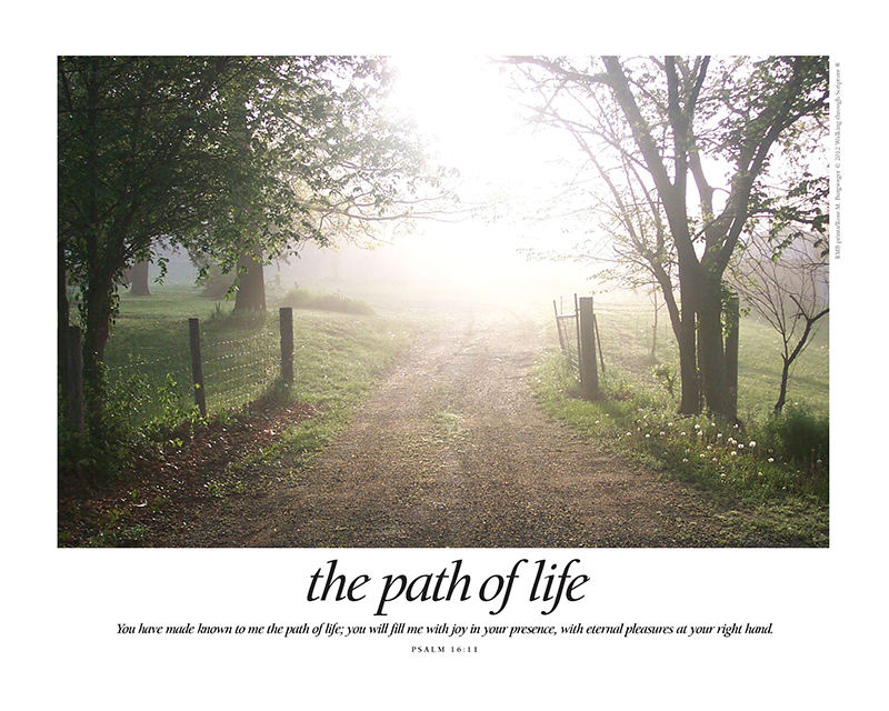 Path of Life w-text