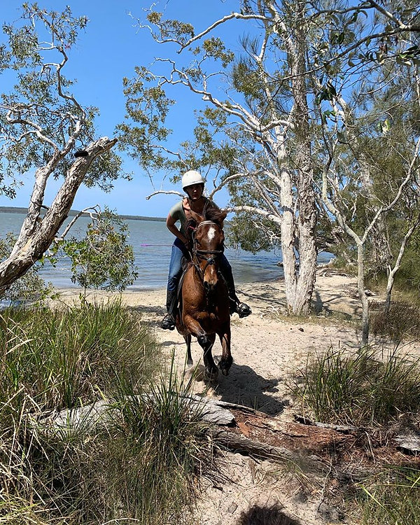 Noosa Horse Riding at Lake Weyba