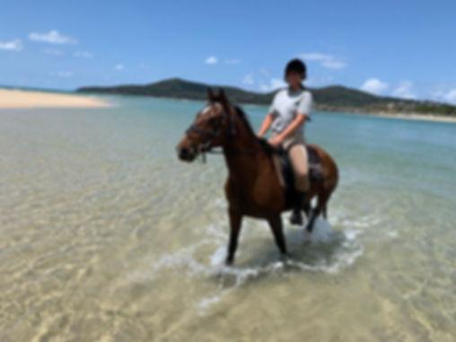 Noosa Horse Riding at North Shore