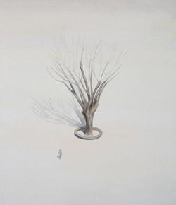 나무와 사람