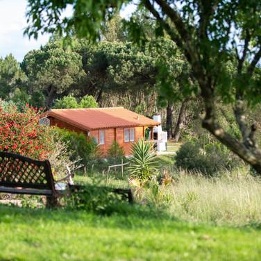 Monte-da-Choça-tranquility-wooden-house.JPG
