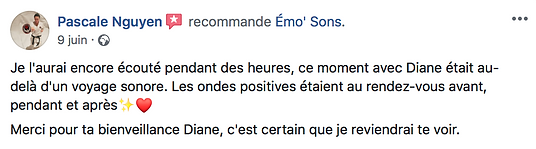 voyage-sonore-ondes-positives-bol-tibetain