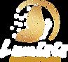 Logo_Lumisis_white.png