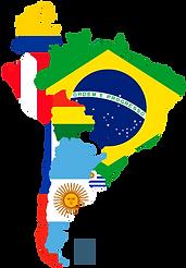 sudamérica_encuesta.png