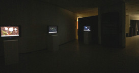 Visitor Experience and Curation, 2018