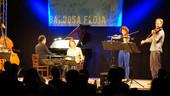 BALDOSA FLOJA in concert