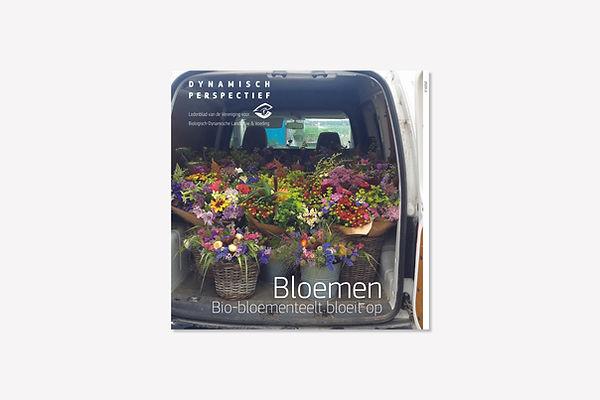 DP Bloemen 1.jpg