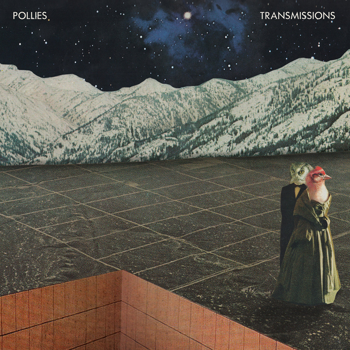 The Pollies