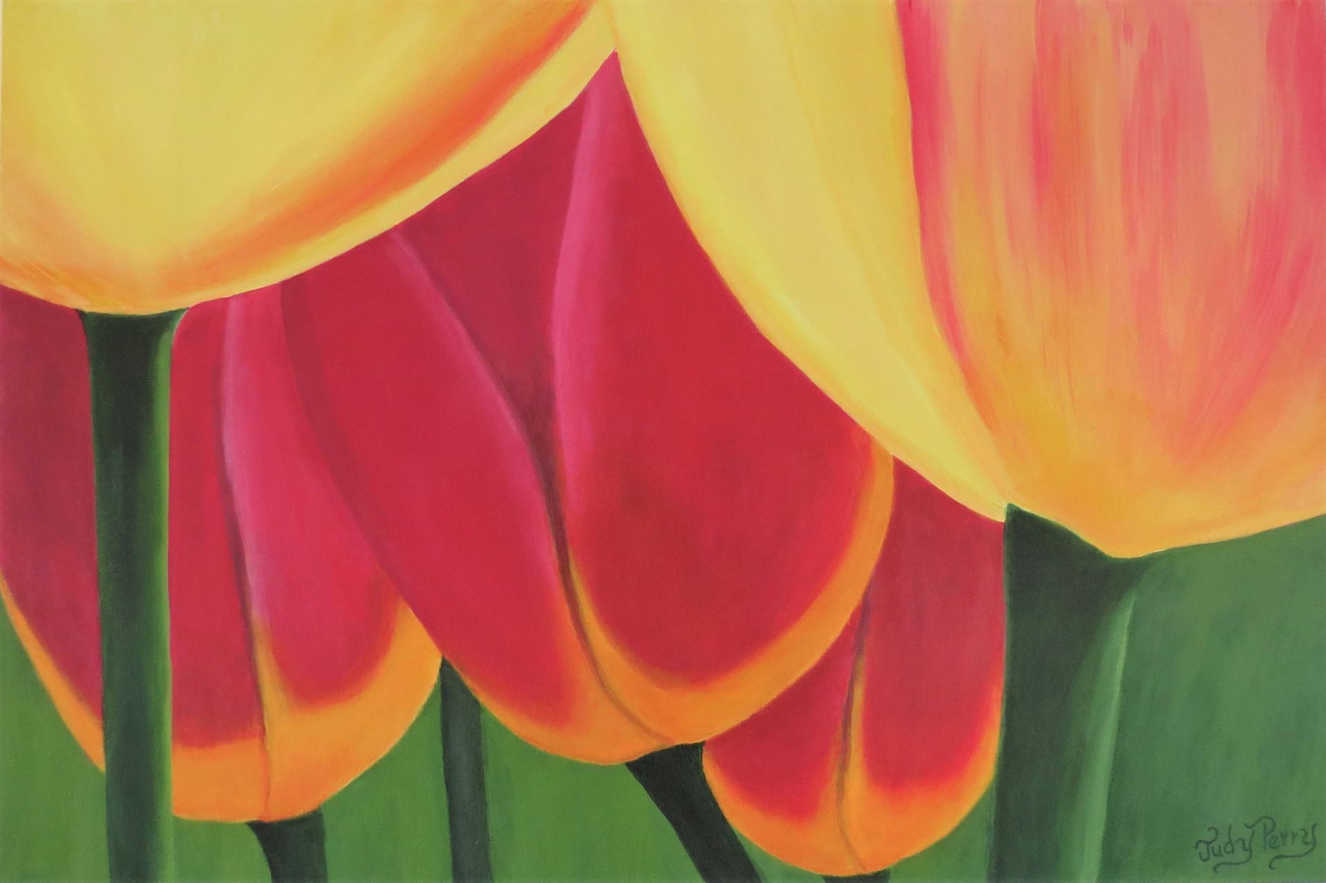 Tulip Sky 24x36 - Sold
