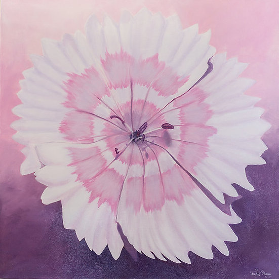 "Dianthus Charm - 24"" x 24"" x 1 1/2"" Original Acrylic Painting on Canvas"