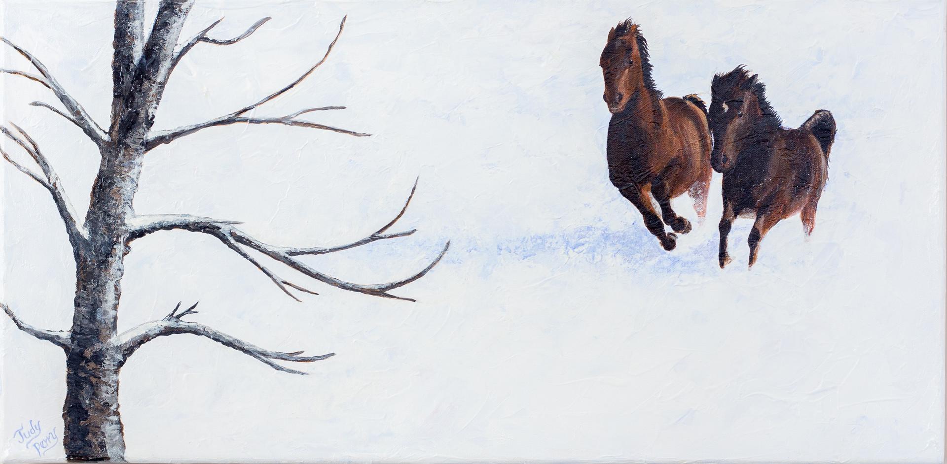 Race Horses - not for sale.jpg