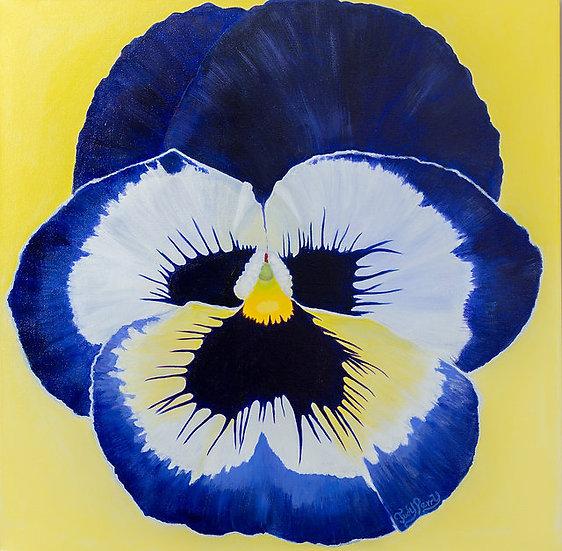 "Midnight Blue - (Pansy) 20"" x 20: x 1 1/2""Original Acrylic Painting"