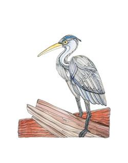 Lindsey - Blue Heron - LR-151-11