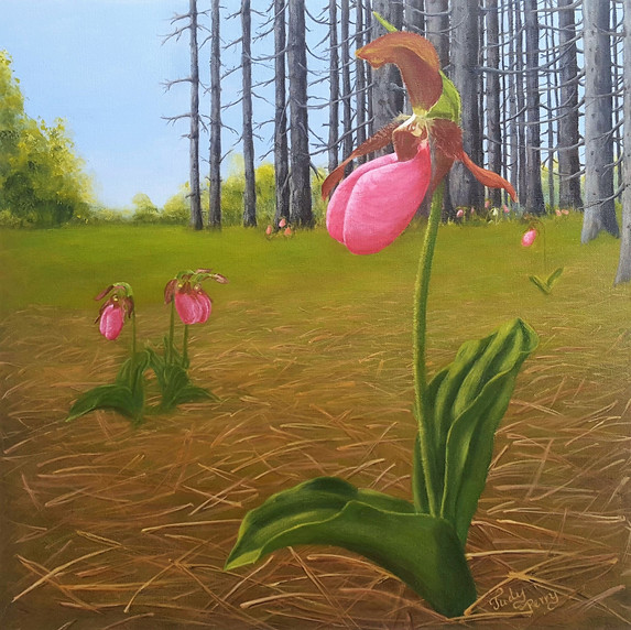Lady Slippers - 18 x 18 - Sold